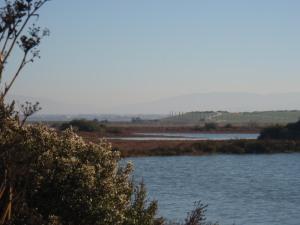 Palo Alto Baylands Park